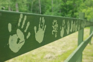 Hand prints on a fence at Charlie Wall park