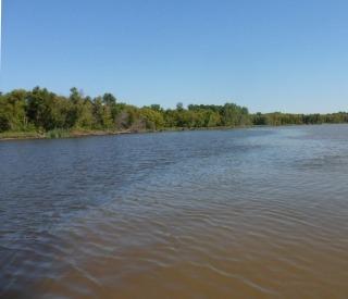 Netley-Libau Marsh