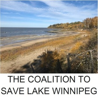 A lake shoreline and the words Coalition to Save Lake Winnipeg