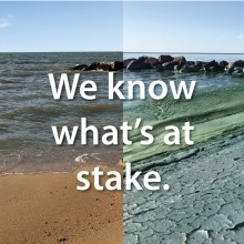 Side by side image of Lake Winnipeg's shoreline, one side clear, the other covered in algae