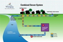 A City of Winnipeg graphic showing how water flows from storm drains to rivers.