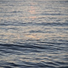 A close-up photo of gentle waves on water.